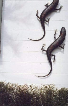 Lizard sculptures fixed to courtyard wall. Local clipped divaricating hedge below (Coprosma propinqua / mikimiki)